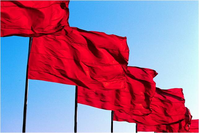 Estate Planning Red Flag:  You Haven't Planned for Incapacity